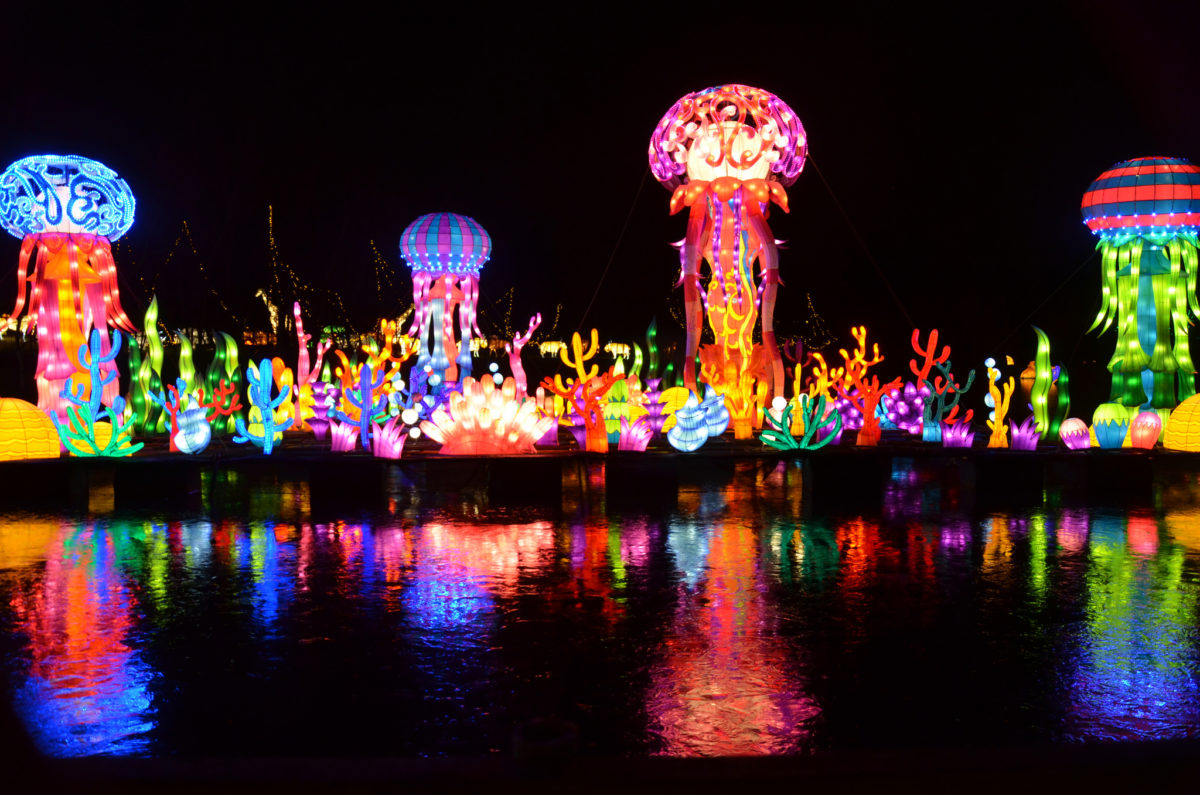 """The Wild"" Chinese Lantern Festival Will Light up the Night in Huntsville"